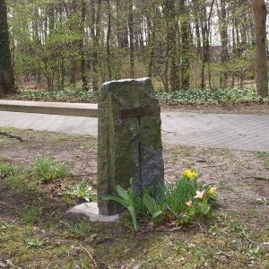 Bank aus Holz und Quarzit-Stein ohne Rückenlehne im Wald