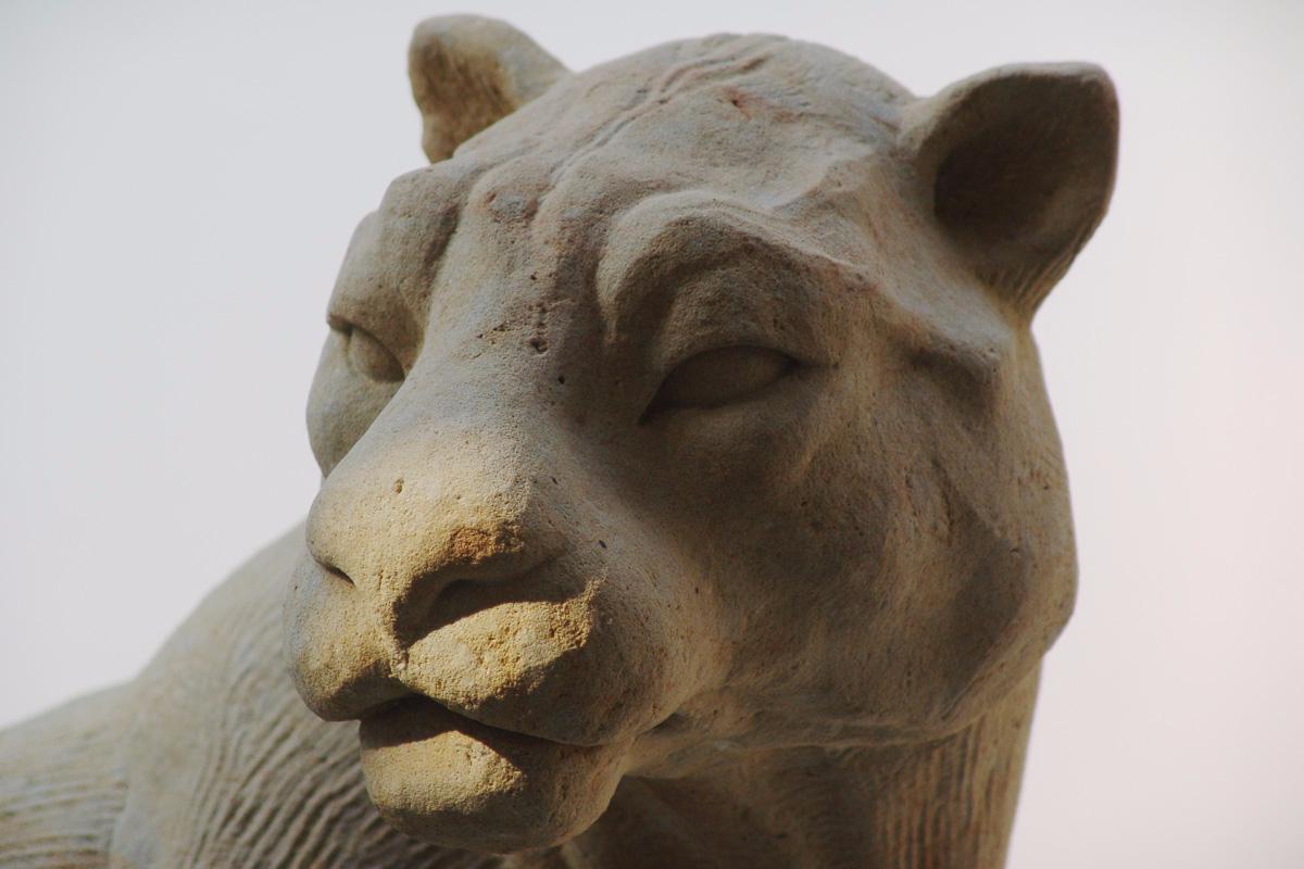 Skulptur aus Sandstein  in Form eines sitzenden Jaguars Nahaufnahme Kopf