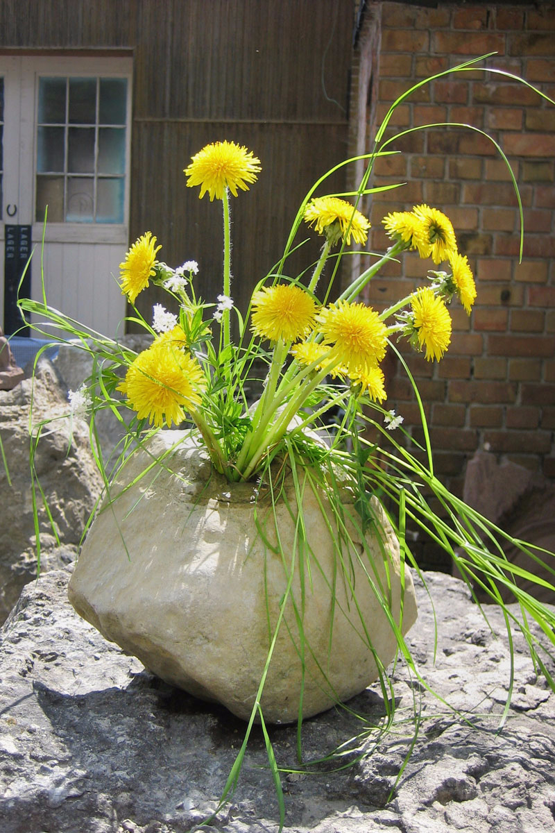 Vase aus Stein mit vielen gelben Blumen