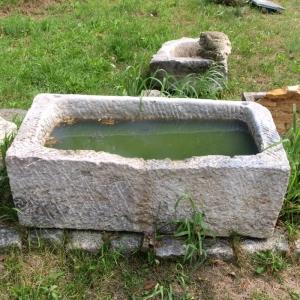 Großer Steintrog aus hellem Kalkstein gefüllt mit grünlichem Wasser
